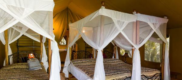 Insekten im Urlaub: Wer unter einem Moskitonetz schläft, hält Mücken auf Distanz