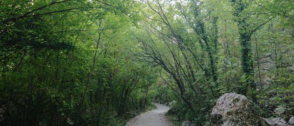 Wandelen in Nationaal Park Paklenica