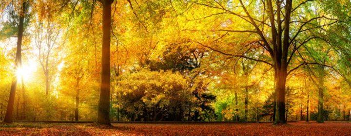 Campingziele für die Herbstferien 2020