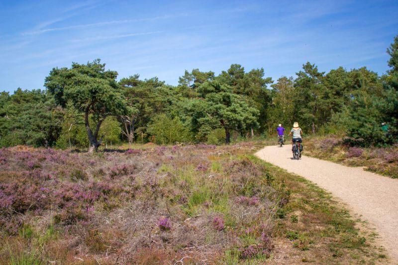 Nationalpark Maasduinen Limburg